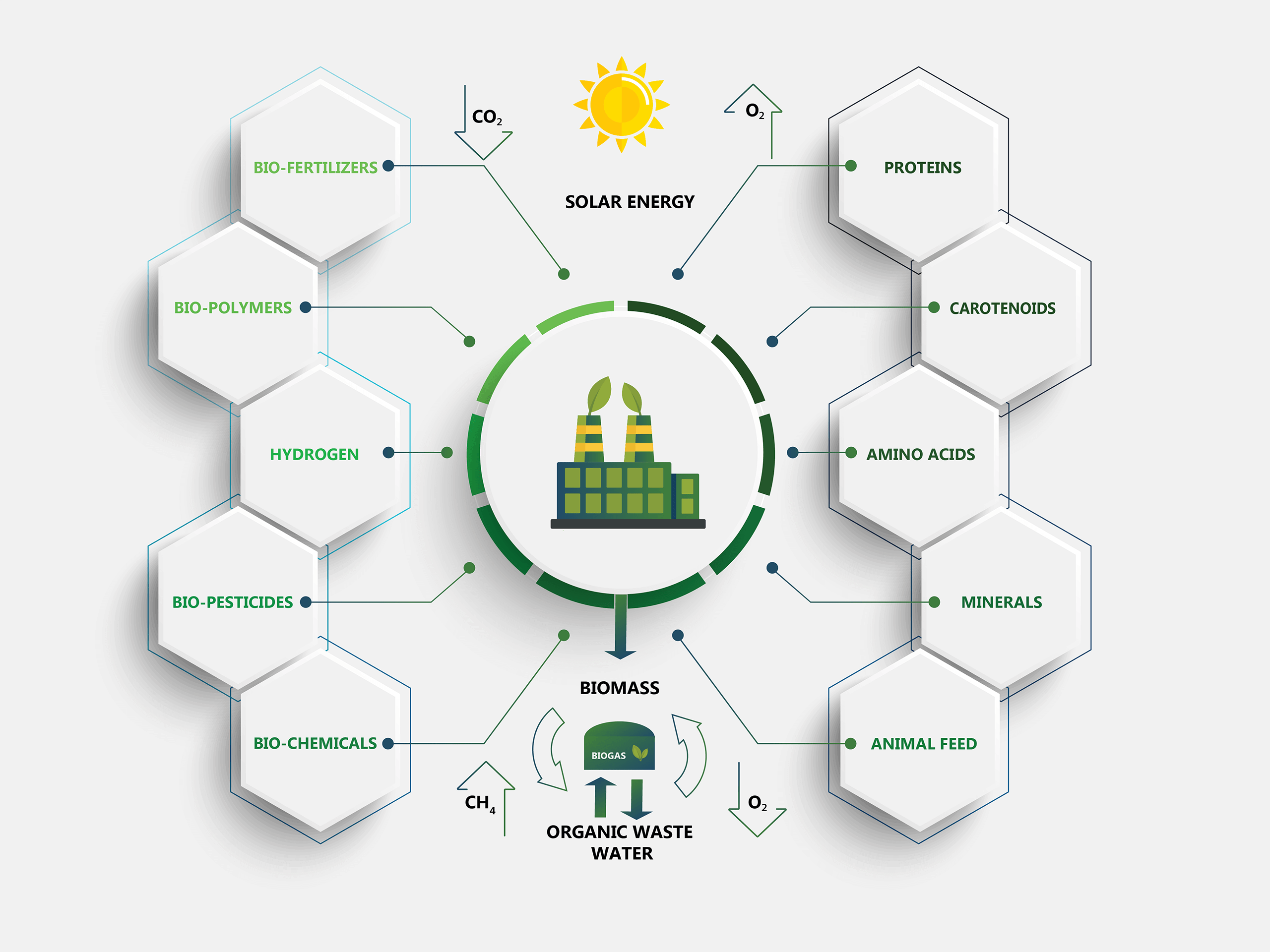 Particula Group_infographic_biorefinery